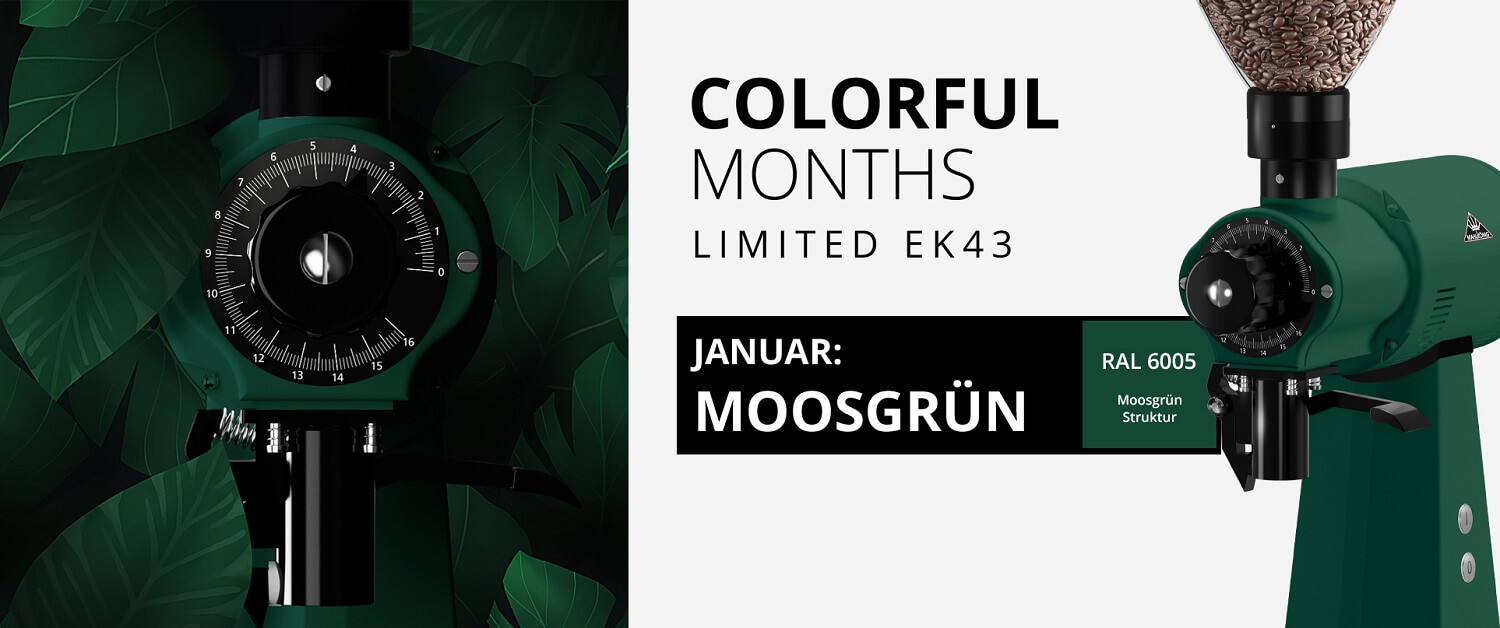 Colorful_Months_News_Header_Januar_DE